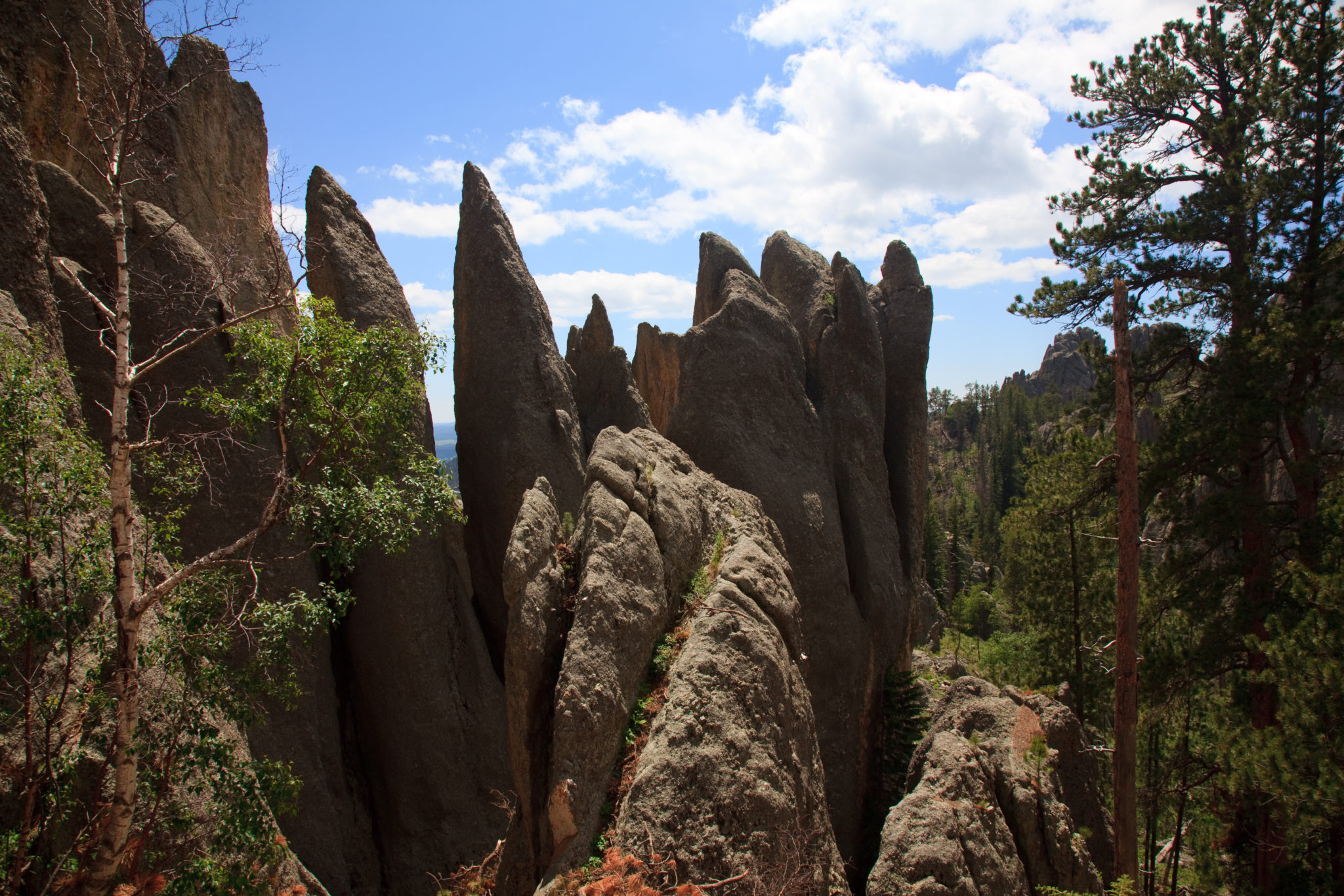 Park Stanowy Custer – The Needles Highway