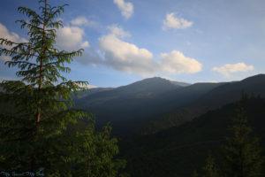 Bukowina, Rumunia